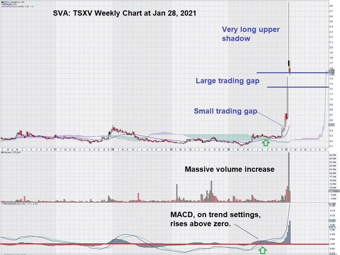 Sernova stock chart Jan 2021 Ichimoku Clouds Update