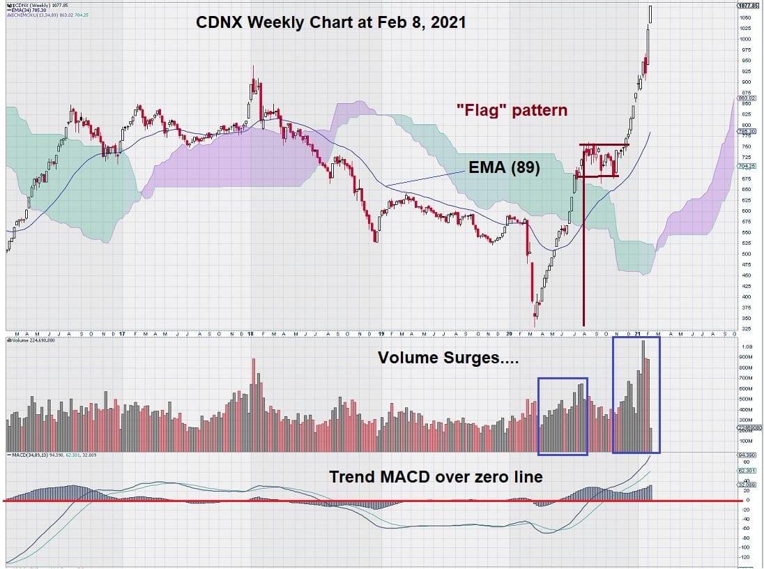CDNX weekly chart feb 8, 2021